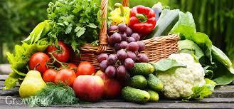 Reverse Aging By Eating Just Vegetables, True Story of Lisa