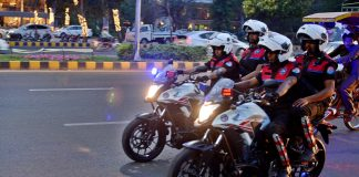 Dolphin Force for harassing women
