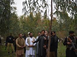 PTI Billion Tree Tsunami & Party Funding Sources Will Be Probed