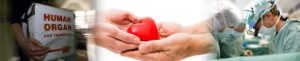 It Is All About The Heart: $4m Fund Given On Heart Transplantation