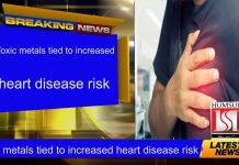 Toxic metals tied to increased heart disease risk